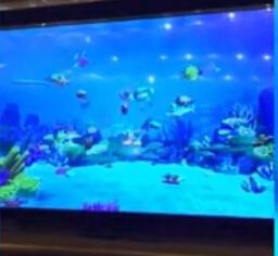 昆山金鹰国际中心中秋龙趸宴-3D魔幻鱼技术